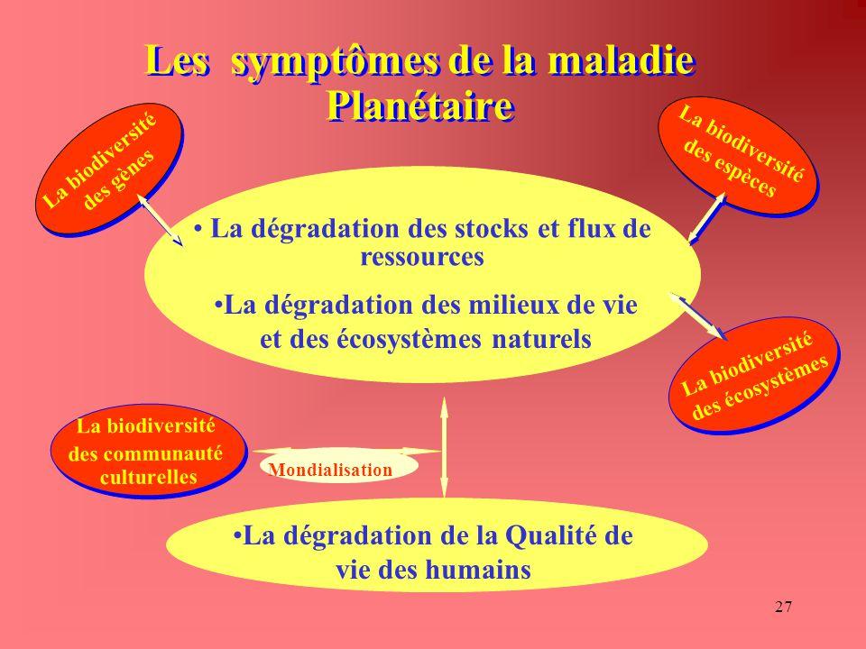 27 Les symptômes de la maladie Planétaire La dégradation des stocks et flux de ressources La dégradation de la Qualité de vie des humains La biodivers