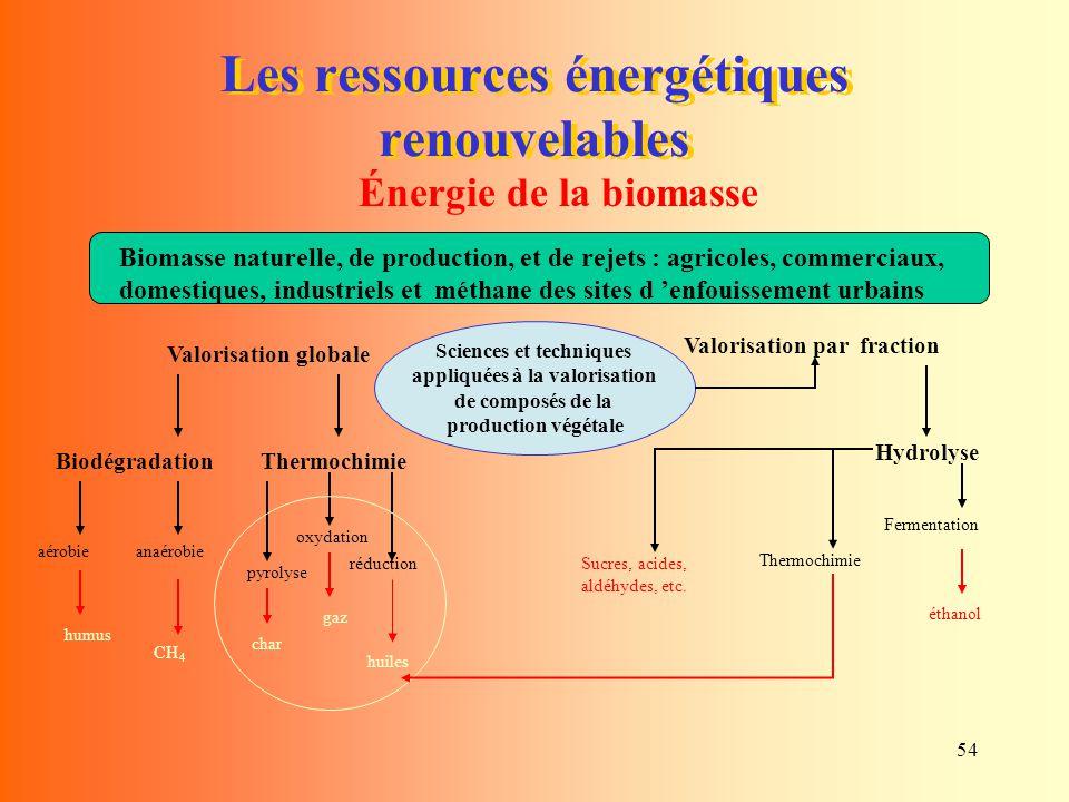 54 Les ressources énergétiques renouvelables Énergie de la biomasse Biomasse naturelle, de production, et de rejets : agricoles, commerciaux, domestiq