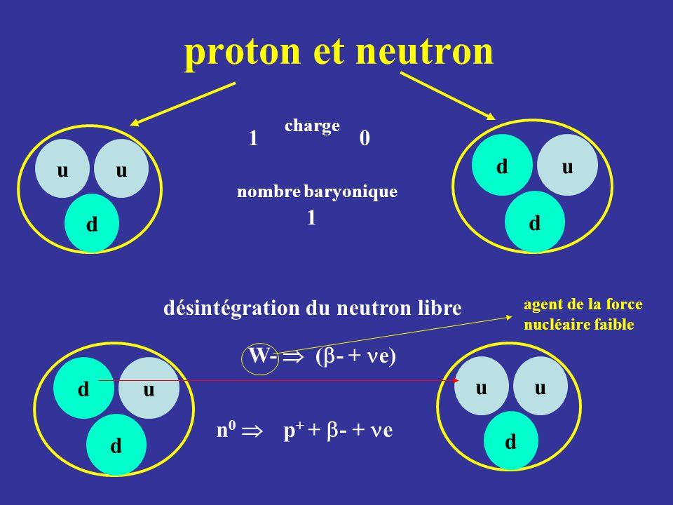 proton et neutron uu d du d du d uu d W-  (  - + e) désintégration du neutron libre charge nombre baryonique 1 10 n 0  p + +  - + e agent de la fo