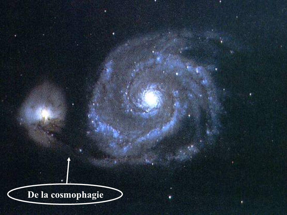De la cosmophagie