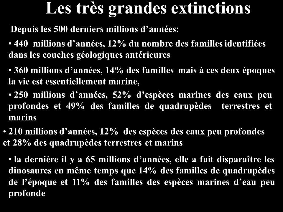 Les très grandes extinctions Depuis les 500 derniers millions d'années: 440 millions d'années, 12% du nombre des familles identifiées dans les couches