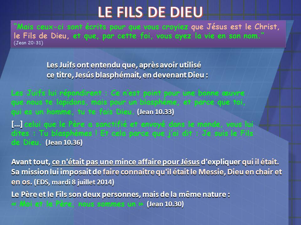 """""""Mais ceux-ci sont écrits pour que vous croyiez que Jésus est le Christ, le Fils de Dieu, et que, par cette foi, vous ayez la vie en son nom."""" (Jean 2"""
