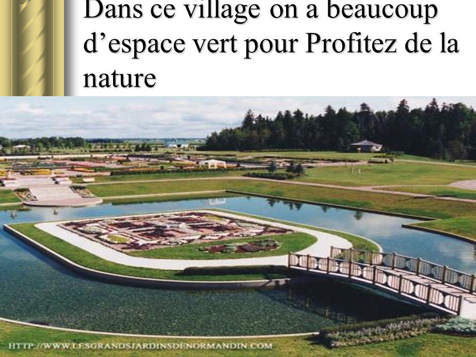 Dans ce village on a beaucoup d'espace vert pour Profitez de la nature