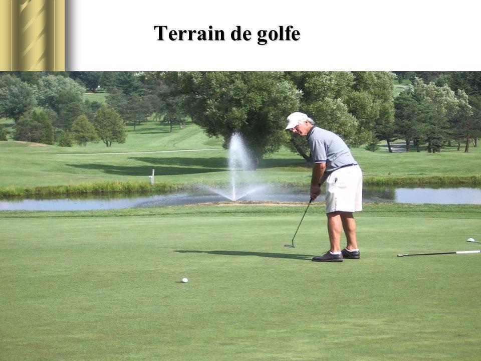 Terrain de golfe Terrain de golfe