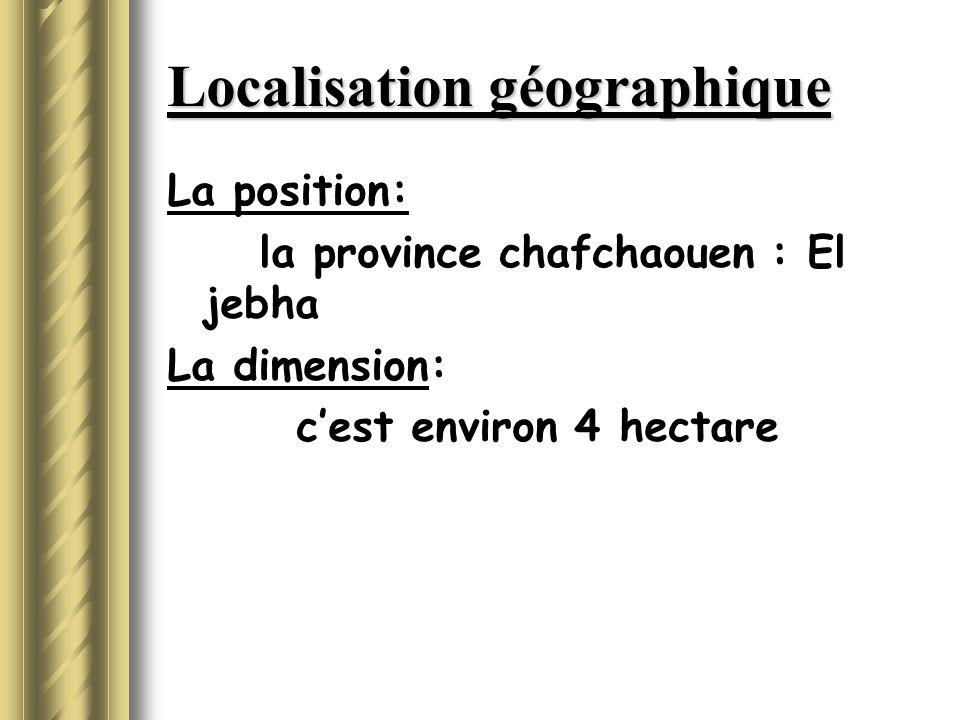 Localisation géographique La position: la province chafchaouen : El jebha La dimension: c'est environ 4 hectare