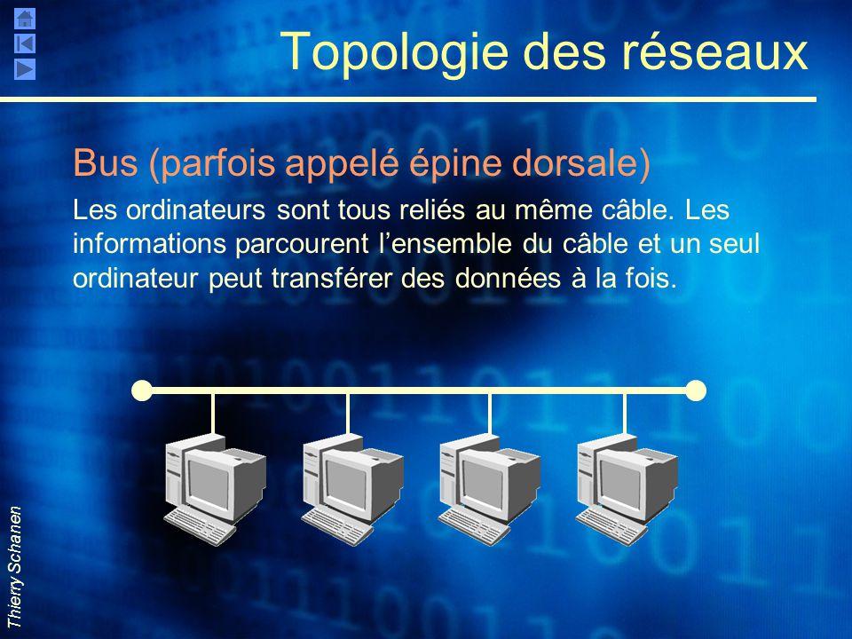Thierry Schanen Topologie des réseaux Bus (parfois appelé épine dorsale) Les ordinateurs sont tous reliés au même câble. Les informations parcourent l