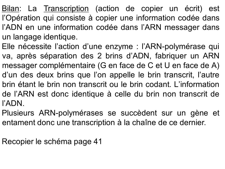 Bilan: La Transcription (action de copier un écrit) est l'Opération qui consiste à copier une information codée dans l'ADN en une information codée da