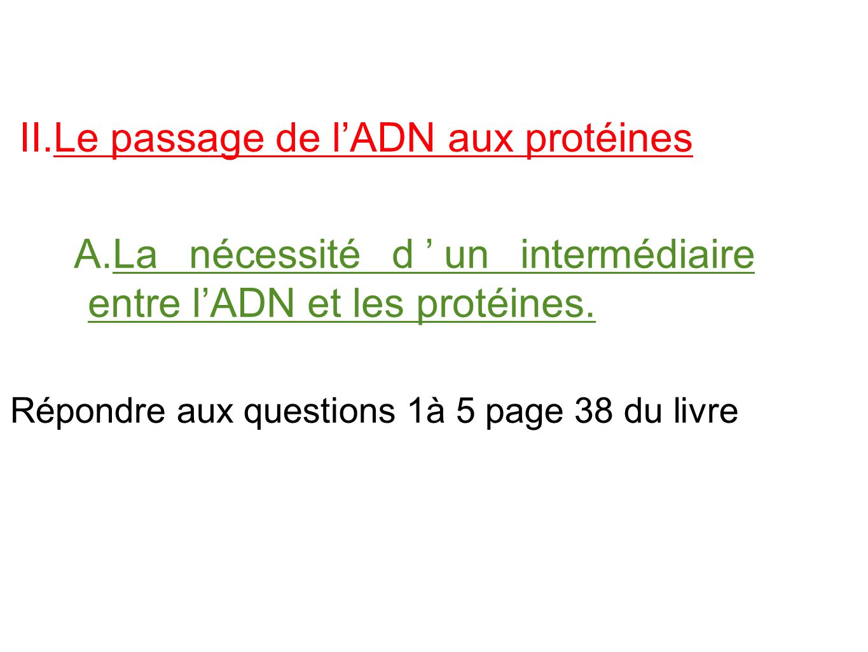 II.Le passage de l'ADN aux protéines A.La nécessité d'un intermédiaire entre l'ADN et les protéines. Répondre aux questions 1à 5 page 38 du livre