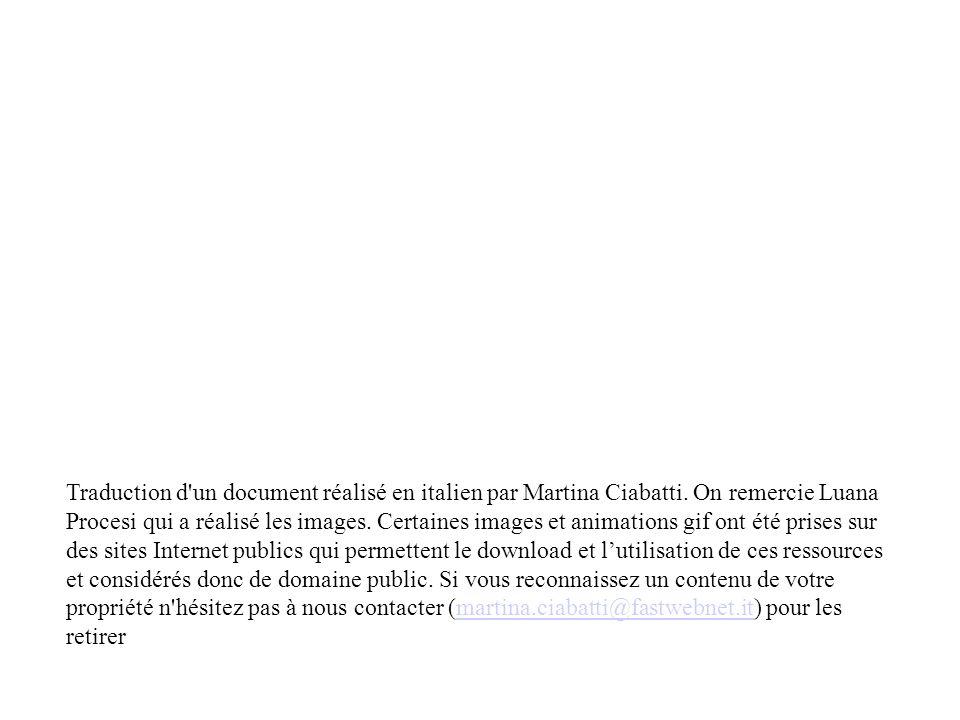 Traduction d'un document réalisé en italien par Martina Ciabatti. On remercie Luana Procesi qui a réalisé les images. Certaines images et animations g