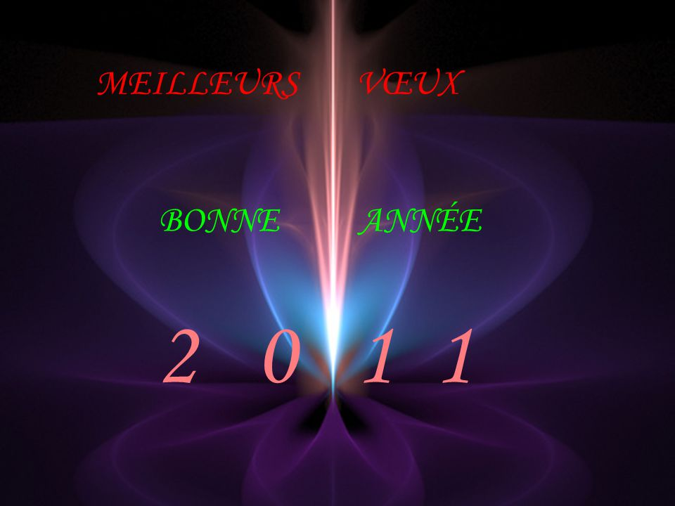 MEILLEURS VŒUX BONNEANNÉE 2 0 1 1