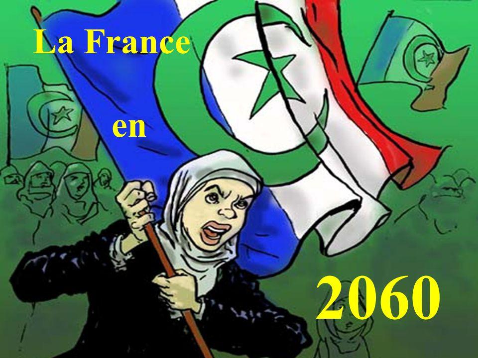 2060 La France en