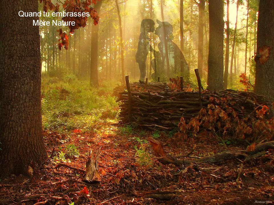 Quand dans la forêt, l'écho du vent berce tes souvenirs