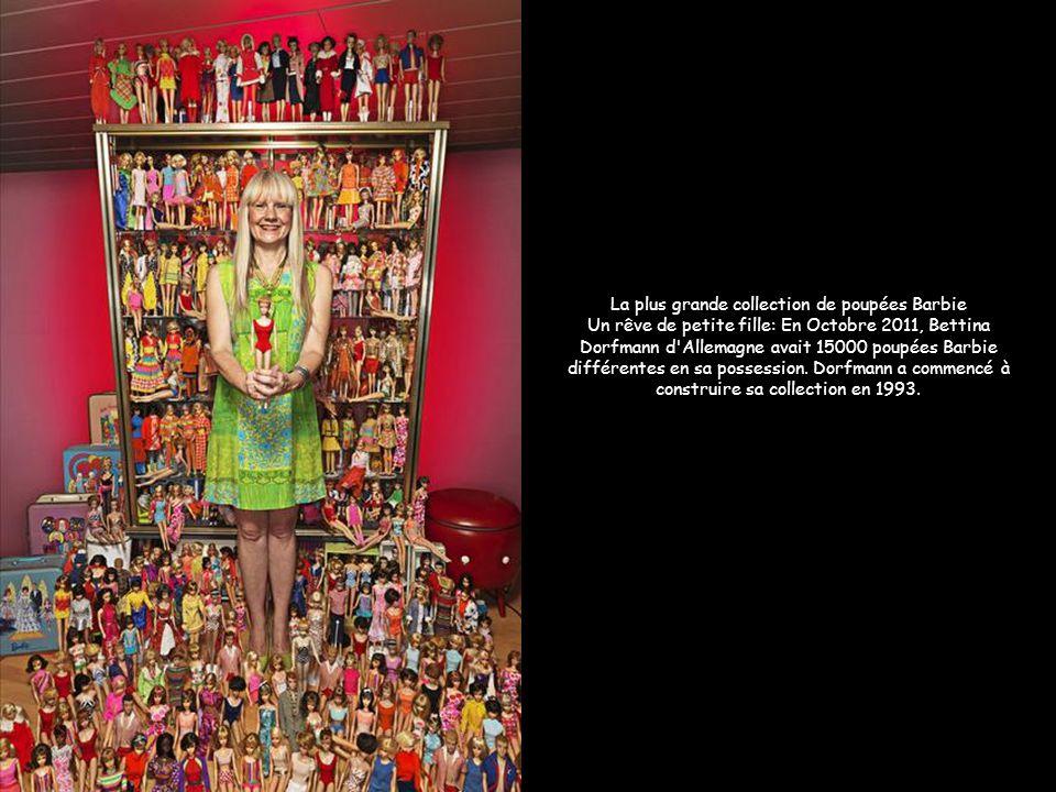 Zeus, le plus grand chien du monde qui engloutit 14 kilos de viande par jour Image: AFP La plus grande collection de poupées Barbie Un rêve de petite