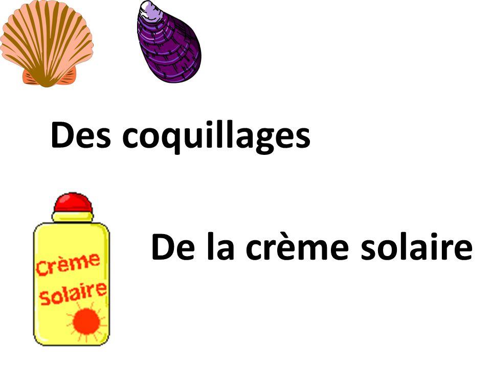 Des coquillages De la crème solaire