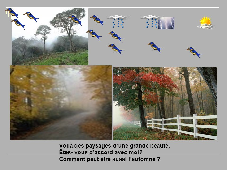 Voilà des paysages d'une grande beauté. Êtes- vous d'accord avec moi? Comment peut être aussi l'automne ?