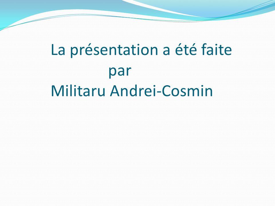 La présentation a été faite par Militaru Andrei-Cosmin