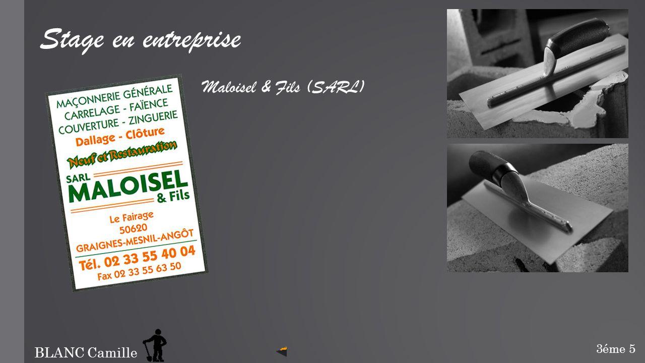 Stage en entreprise Maloisel & Fils (SARL) BLANC Camille 3éme 5