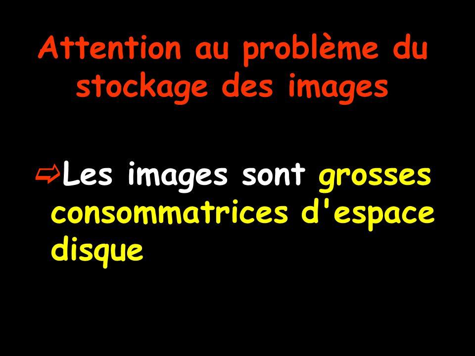 Attention au problème du stockage des images  Les images sont grosses consommatrices d espace disque