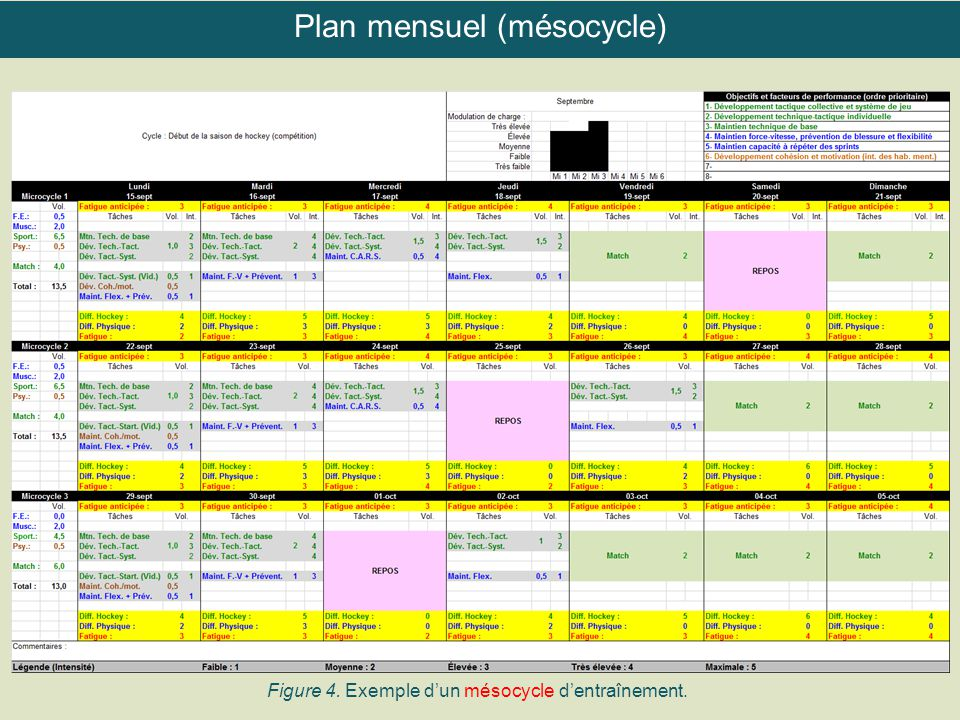 Figure 4. Exemple d'un mésocycle d'entraînement. Plan mensuel (mésocycle)