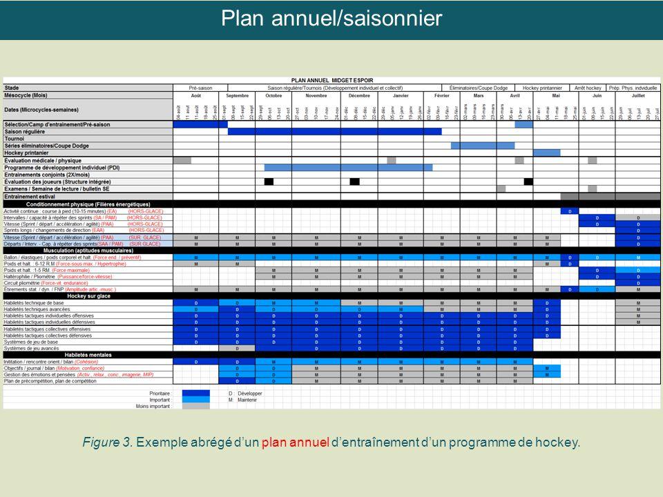 Figure 3. Exemple abrégé d'un plan annuel d'entraînement d'un programme de hockey. Plan annuel/saisonnier
