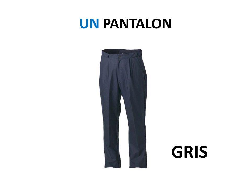 UN PANTALON GRIS