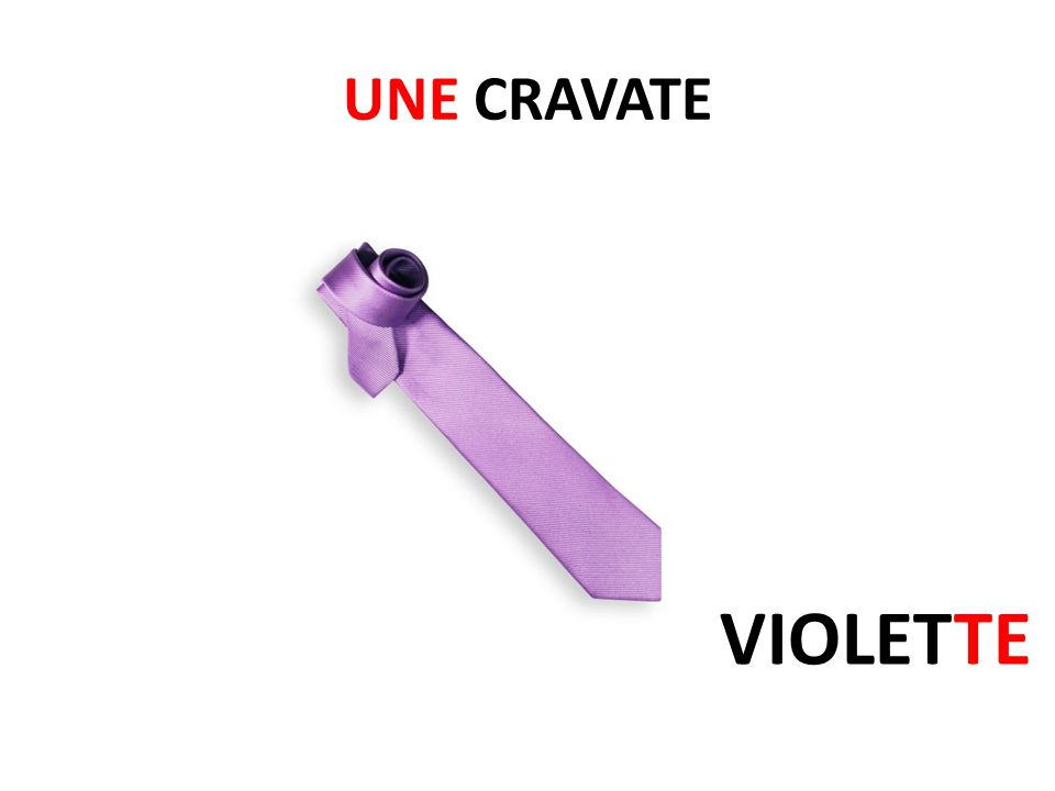 UNE CRAVATE VIOLETTE