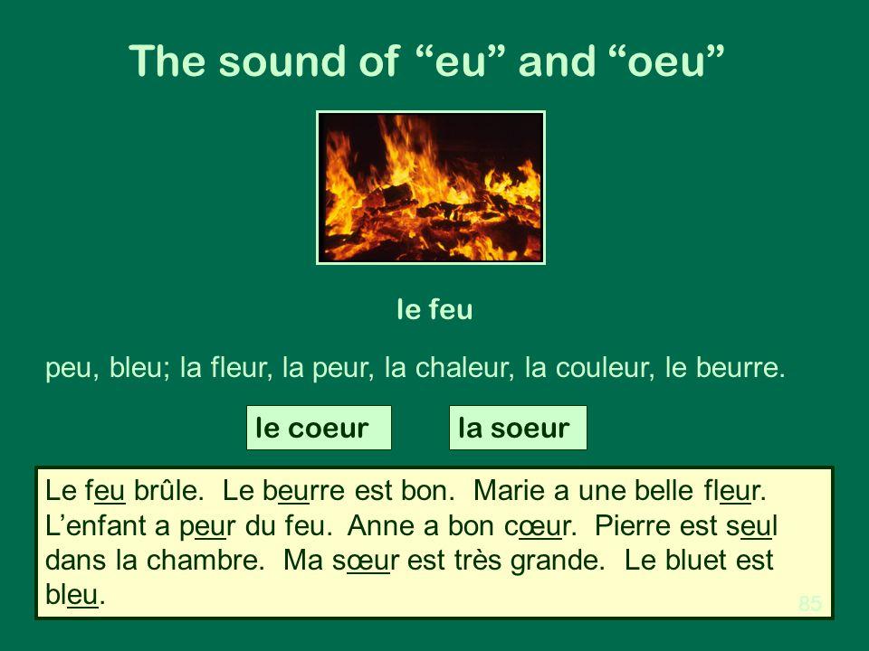 """The sound of """"eu"""" and """"oeu"""" le feu peu, bleu; la fleur, la peur, la chaleur, la couleur, le beurre. le coeurla soeur Le feu brûle. Le beurre est bon."""