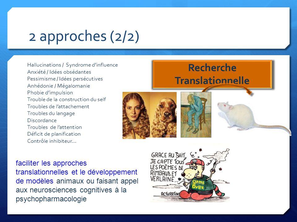 2 approches (2/2) Recherche Translationnelle Hallucinations / Syndrome d'influence Anxiété / Idées obsédantes Pessimisme / Idées persécutives Anhédoni