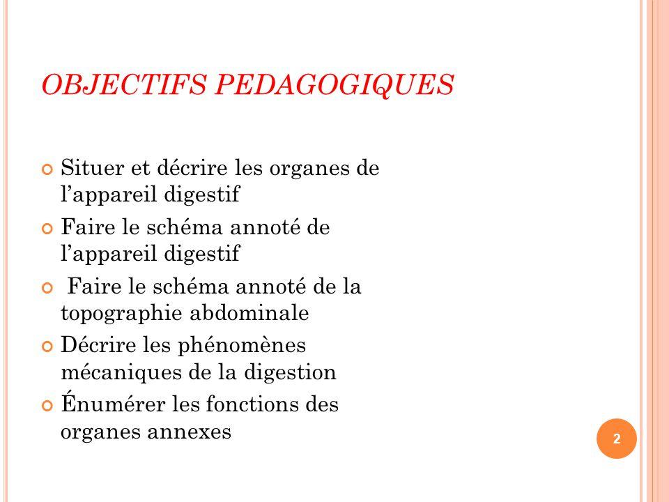 OBJECTIFS PEDAGOGIQUES L'APPAREIL DIGESTIF : Situer et décrire les organes de l'appareil digestif Faire le schéma annoté de l'appareil digestif Faire