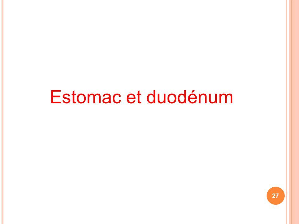Estomac et duodénum 27