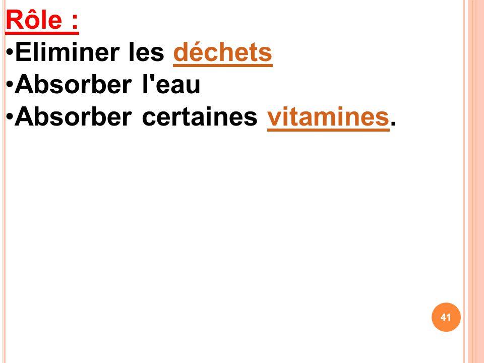 Rôle : Eliminer les déchetsdéchets Absorber l'eau Absorber certaines vitamines.vitamines 41