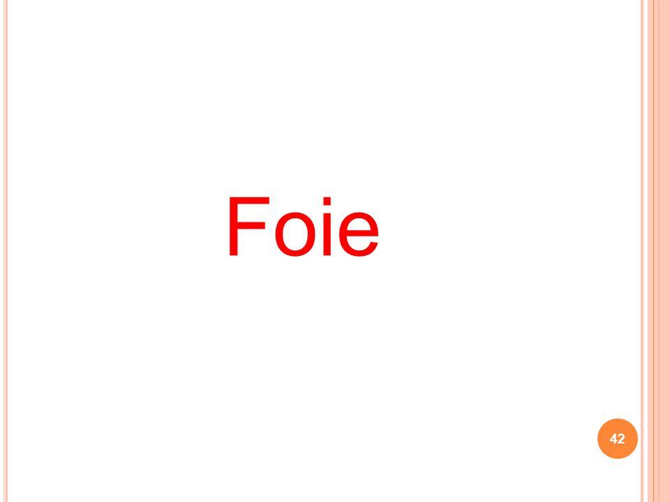Foie 42