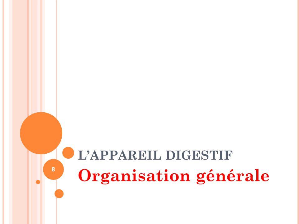 L'APPAREIL DIGESTIF Organisation générale 8