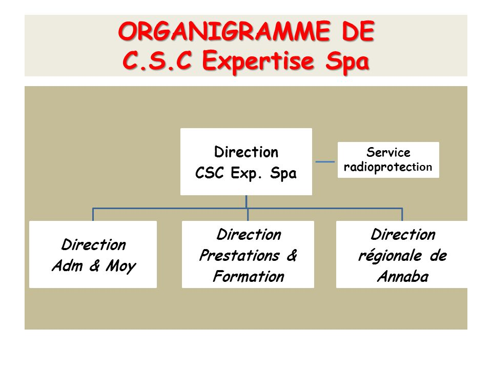 ORGANIGRAMME DE C.S.C Expertise Spa Direction CSC Exp. Spa Direction Adm & Moy Direction Prestations & Formation Direction régionale de Annaba Service
