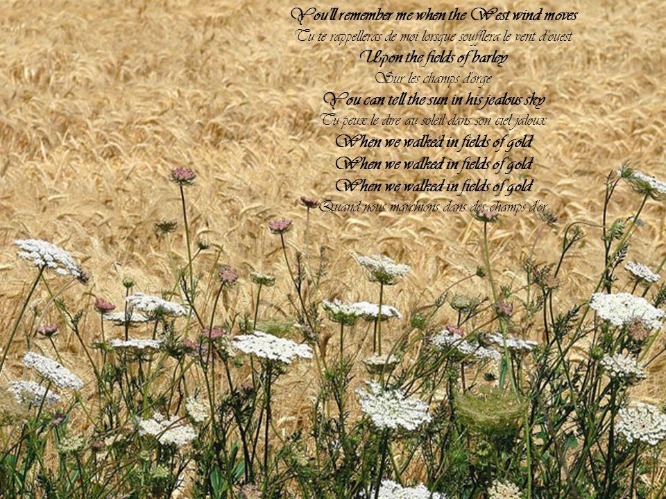 Many years have passed since those summer days Beaucoup d'années ont passé depuis ces jours d'été Among the fields of barley Parmi les champs d'orge S