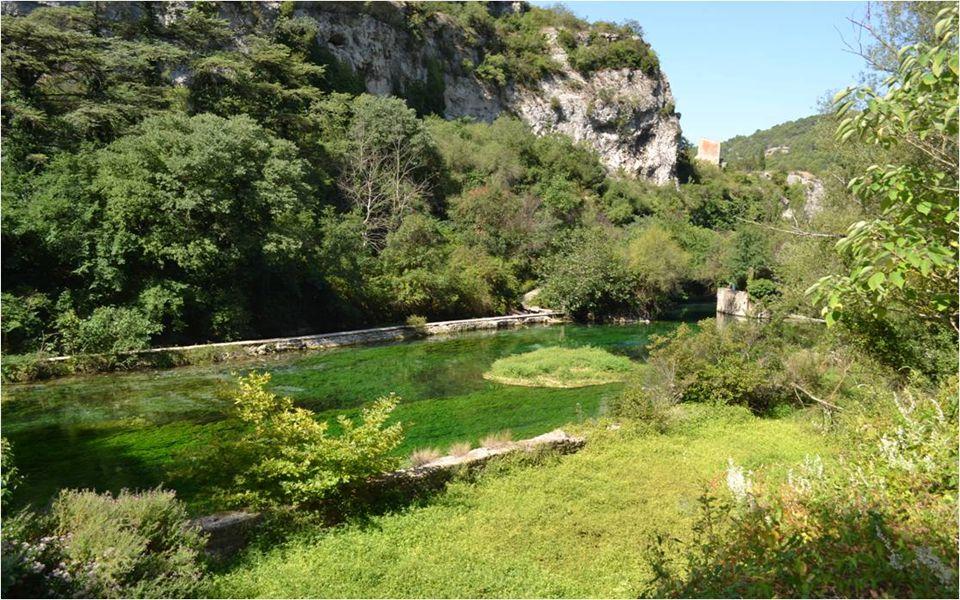 La Sorgue et ses rives verdoyantes.