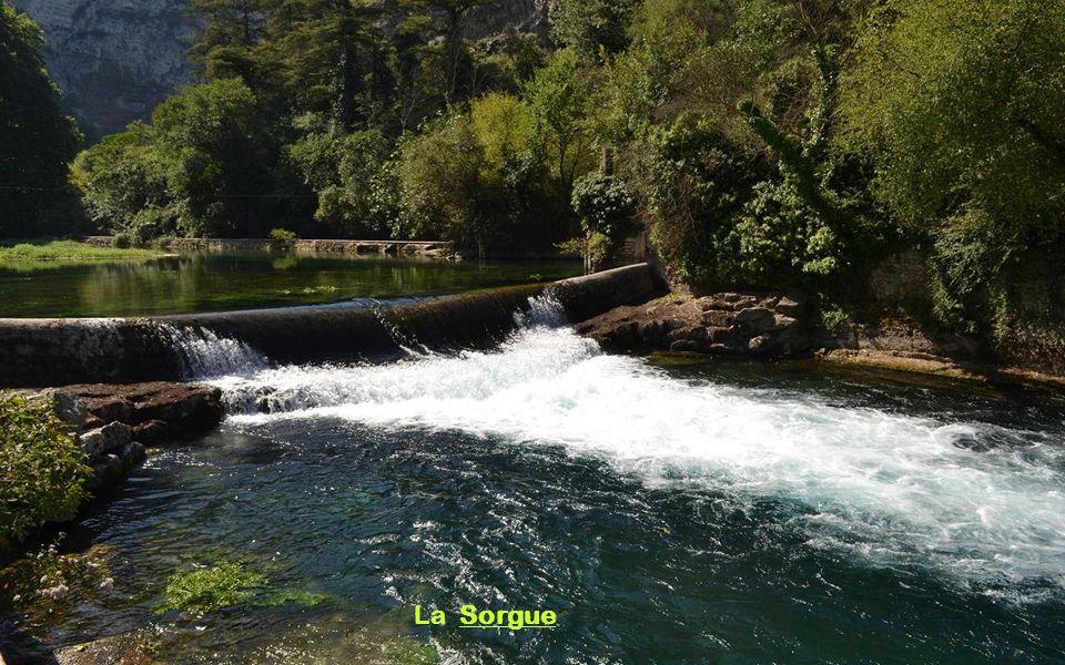 Fontaine de Vaucluse est située au Sud-est de la France, dans le département du Vaucluse. C'est un village exceptionnel car il possède la plus grande