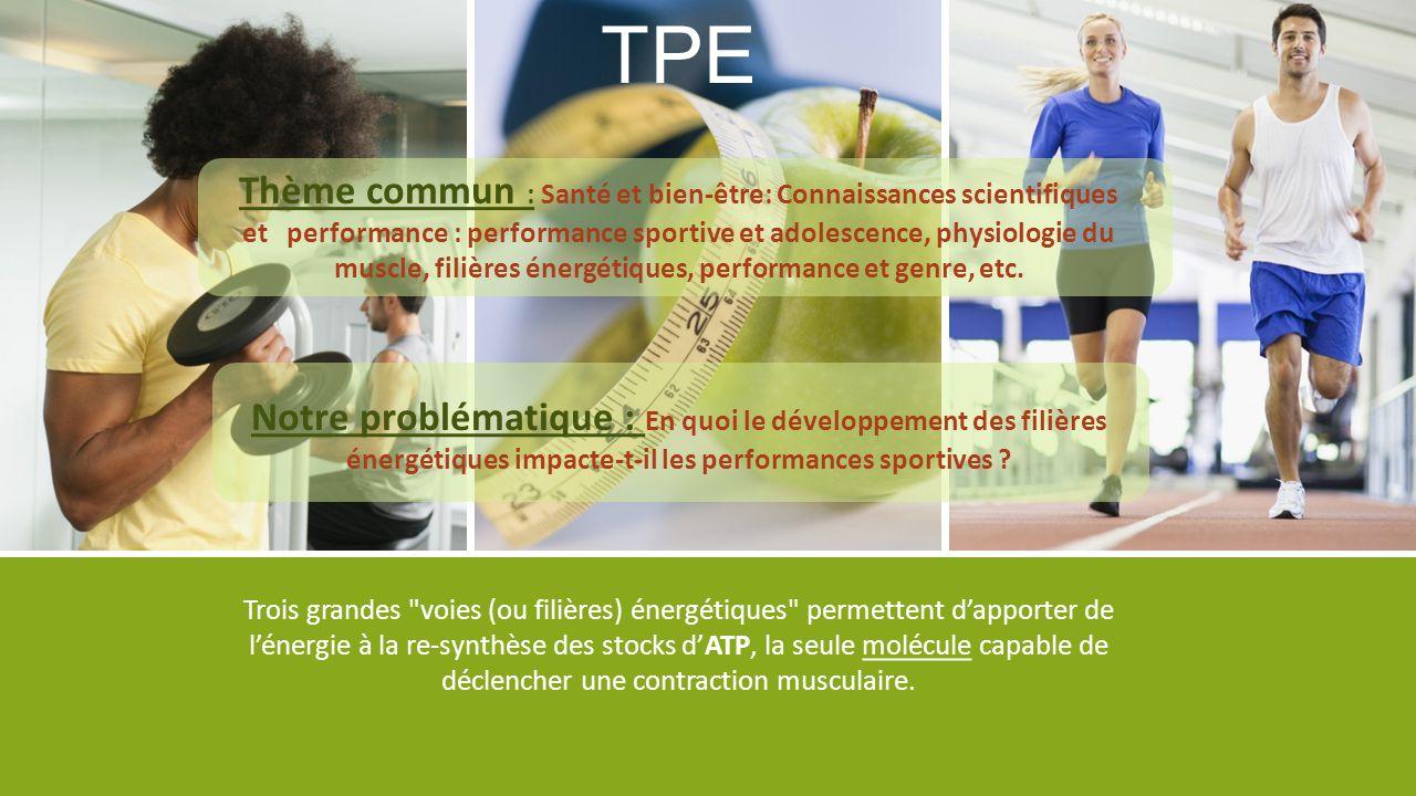 TPE Thème commun : Santé et bien-être: Connaissances scientifiques et performance : performance sportive et adolescence, physiologie du muscle, filièr