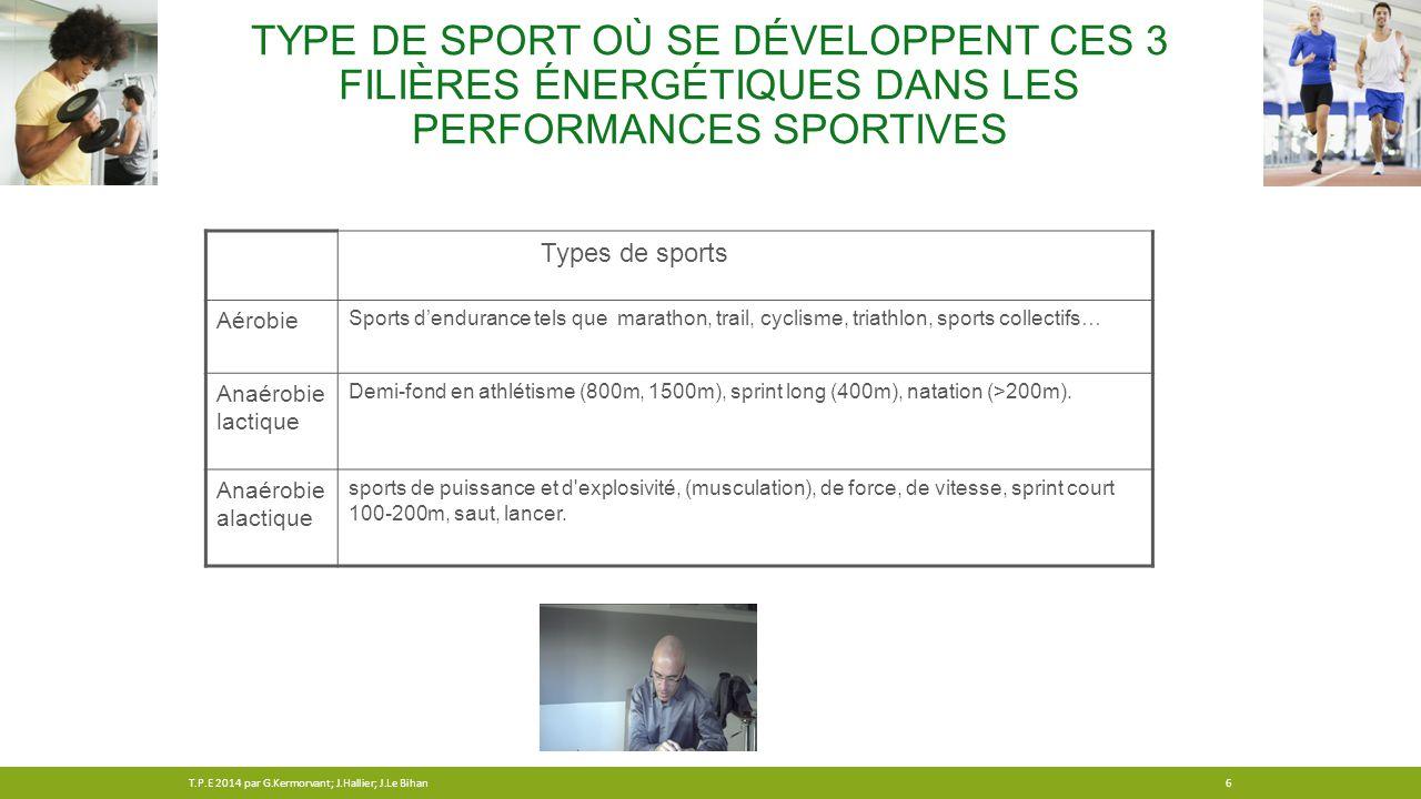TYPE DE SPORT OÙ SE DÉVELOPPENT CES 3 FILIÈRES ÉNERGÉTIQUES DANS LES PERFORMANCES SPORTIVES Types de sports Aérobie Sports d'endurance tels que marath