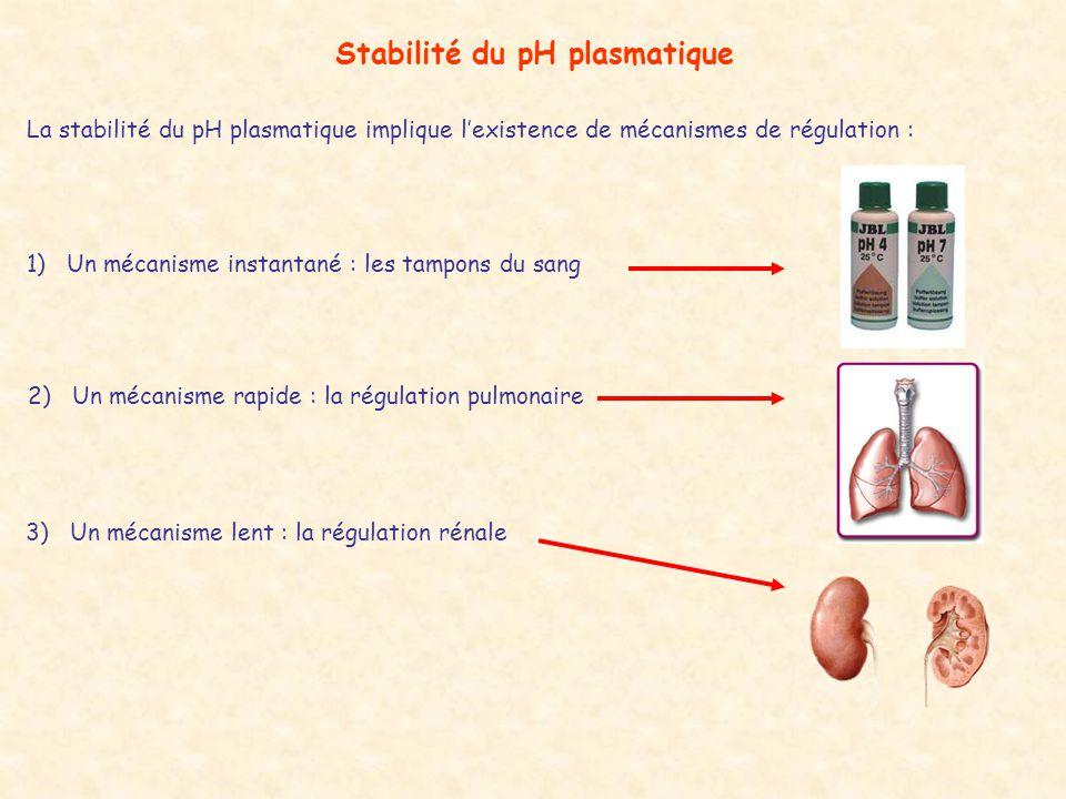 La stabilité du pH plasmatique implique l'existence de mécanismes de régulation : Stabilité du pH plasmatique 1)Un mécanisme instantané : les tampons