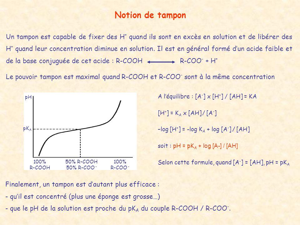 Notion de tampon Un tampon est capable de fixer des H + quand ils sont en excès en solution et de libérer des H + quand leur concentration diminue en