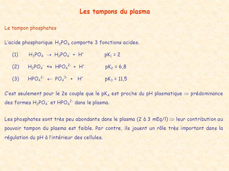 Les tampons du plasma Le tampon phosphates L'acide phosphorique H 3 PO 4 comporte 3 fonctions acides. (1) H 3 PO 4  H 2 PO 4 - + H + pK 1 = 2 (2) H 2