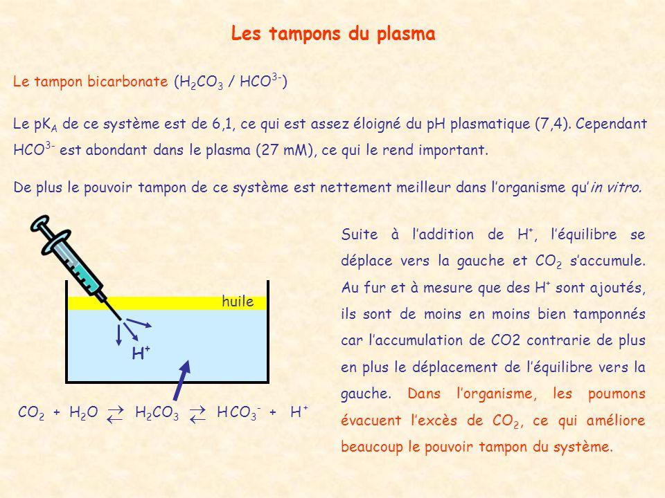 Les tampons du plasma Le tampon bicarbonate (H 2 CO 3 / HCO 3- ) Le pK A de ce système est de 6,1, ce qui est assez éloigné du pH plasmatique (7,4). C
