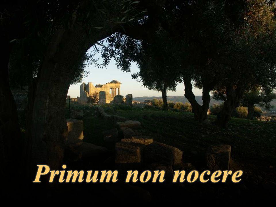 Primum non nocerePrimum non nocere
