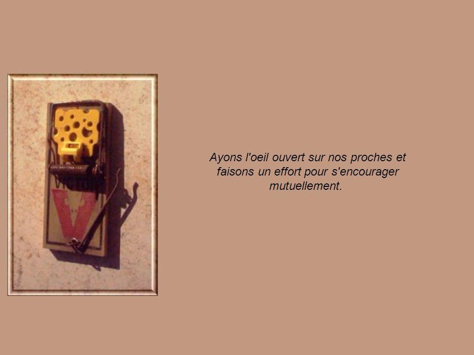 Monsieur Souris surveillait tout ce va-et-vient de par la fente du mur en ressentant une grande tristesse.