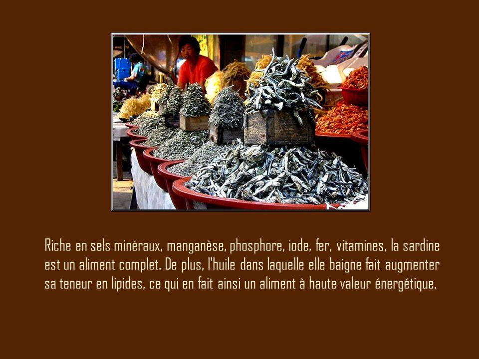 Riche en sels minéraux, manganèse, phosphore, iode, fer, vitamines, la sardine est un aliment complet. De plus, l'huile dans laquelle elle baigne fait
