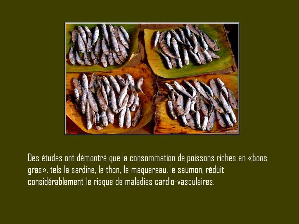 Des études ont démontré que la consommation de poissons riches en «bons gras», tels la sardine, le thon, le maquereau, le saumon, réduit considérablem