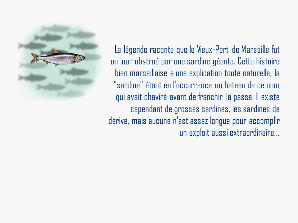 La légende raconte que le Vieux-Port de Marseille fut un jour obstrué par une sardine géante. Cette histoire bien marseillaise a une explication toute