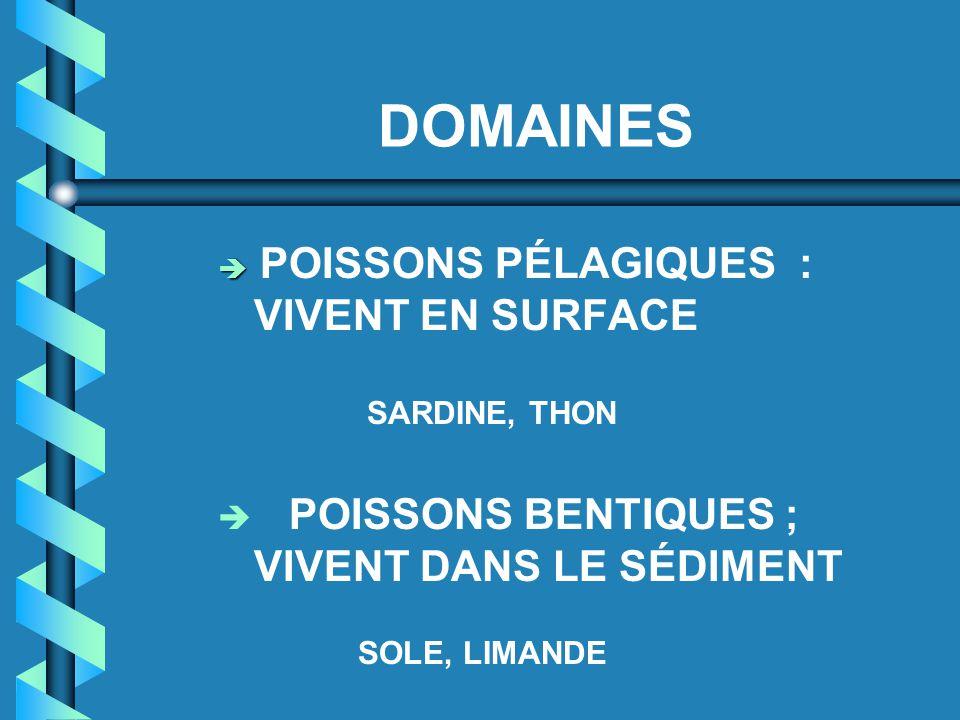 DOMAINES  POISSONS PÉLAGIQUES : VIVENT EN SURFACE SARDINE, THON  POISSONS BENTIQUES ; VIVENT DANS LE SÉDIMENT SOLE, LIMANDE