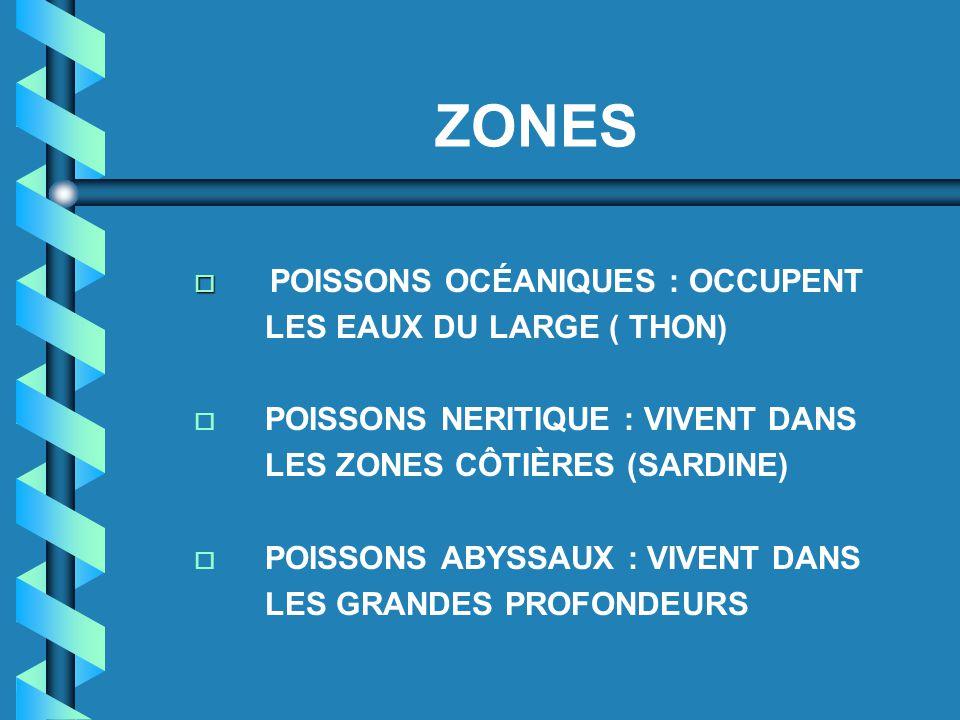 ZONES  POISSONS OCÉANIQUES : OCCUPENT LES EAUX DU LARGE ( THON) o POISSONS NERITIQUE : VIVENT DANS LES ZONES CÔTIÈRES (SARDINE) o POISSONS ABYSSAUX :